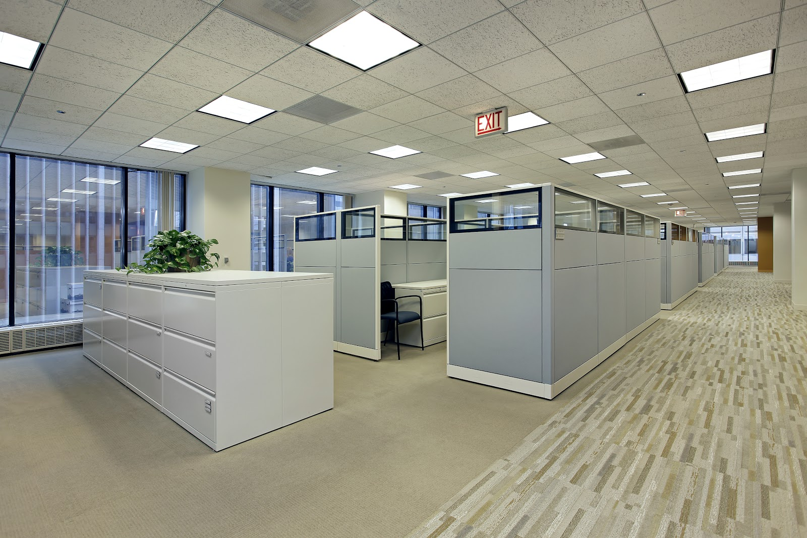 Office cubicles with high walls